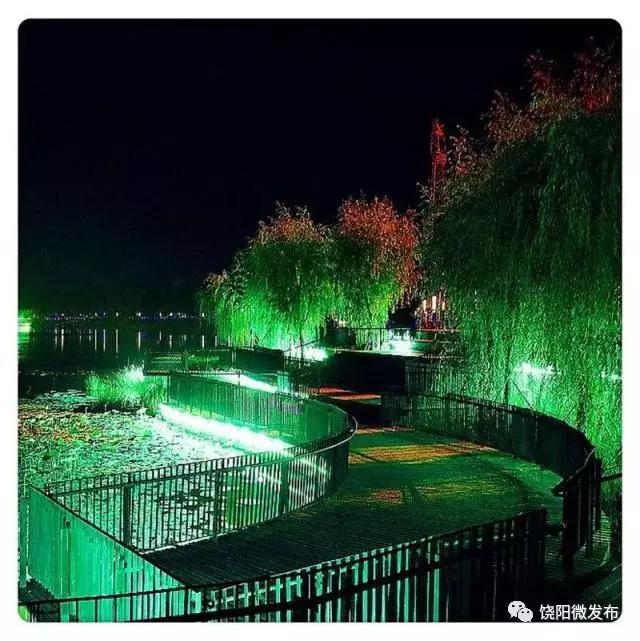 饶阳沱阳公园图片